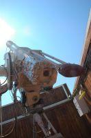 solar_telescope_2008_2